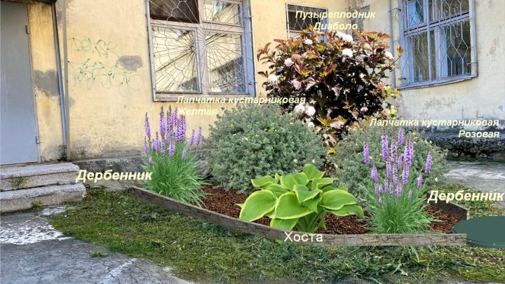 В Екатеринбурге молодая мама за свои деньги сделала дизайнерскую клумбу у страшной детской поликлиники