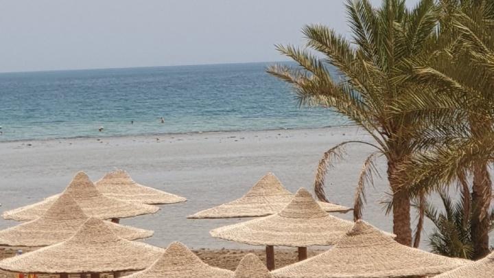 Из Тюмени запускают прямые рейсы в Египет. Обзор цен на путевки