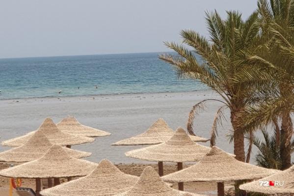 В Египет могут отправиться те, кто хотел поехать в Турцию и не готов отдыхать на российских курортах