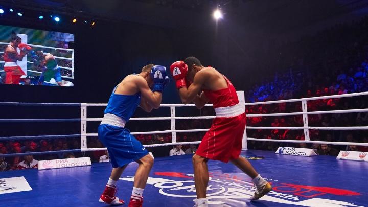 В Самарской области откроют центры бокса