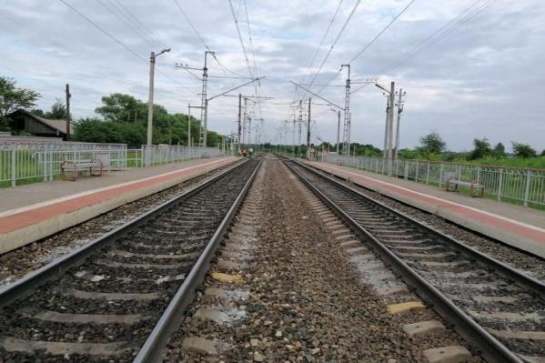 Ребенок погиб под поездом на станции Берендеево в Ярославской области