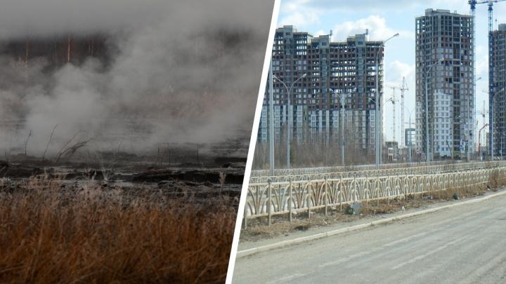 На месте горящих торфяников в Екатеринбурге появятся жилые дома. Насколько это безопасно?