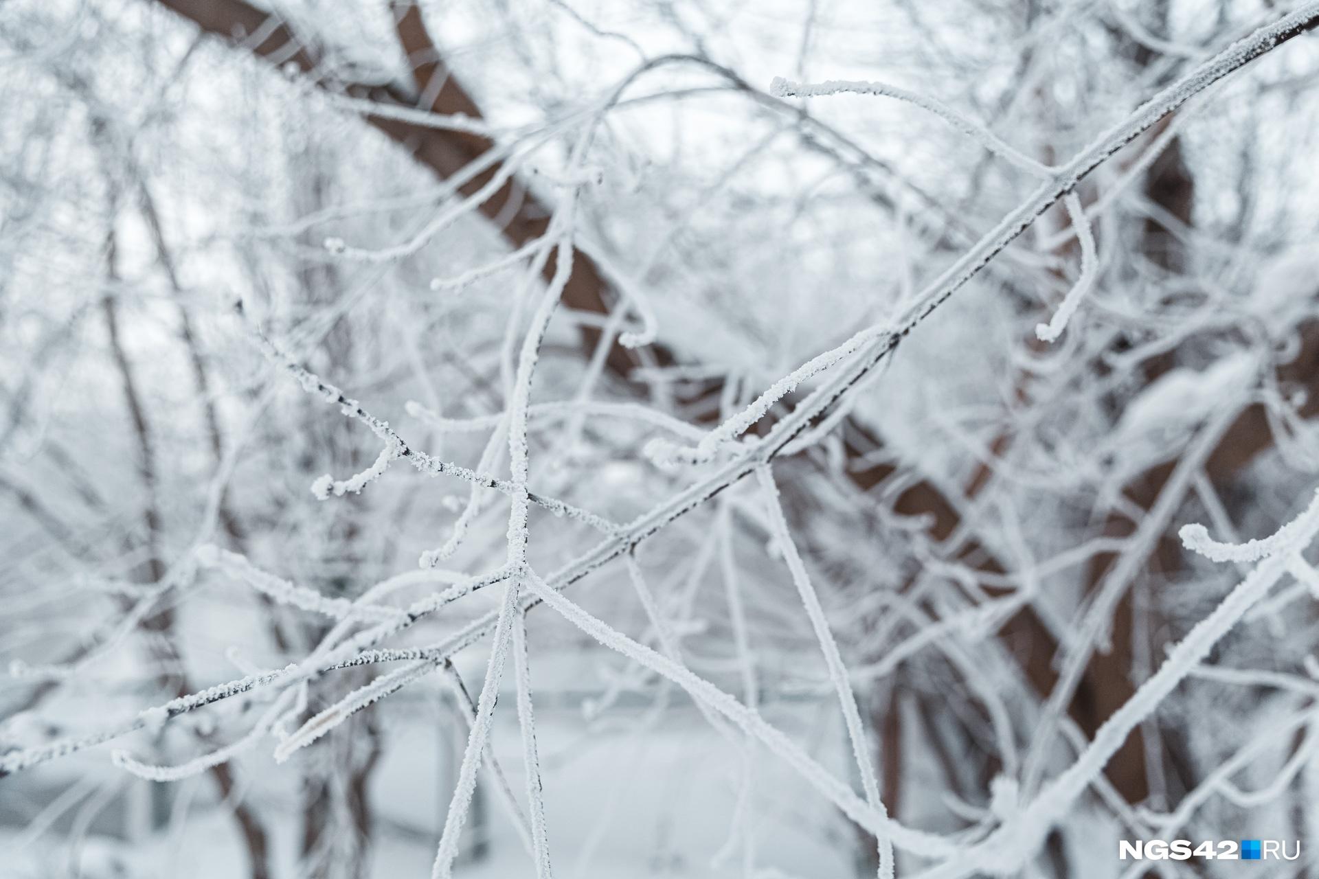 По данным синоптиков, уже 27 января морозы отступят