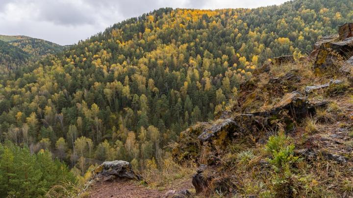 Пора валить из города: где в Красноярске полюбоваться золотой осенью