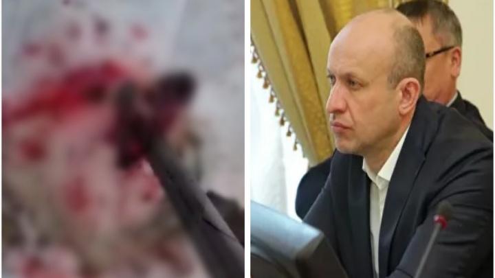 Делом курганского депутата, который заживо давил на Урале беспомощного волка снегоходом, заинтересовался глава СКР