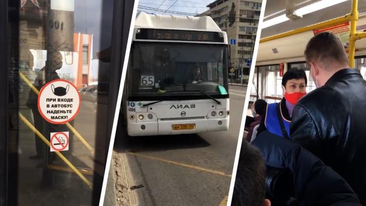 «Трамвай уехал, а клоуны остались»: в Волгограде прошли массовые облавы на безмасочников