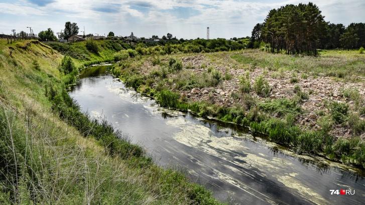 Данные исследования 2013 года близки к нашим измерениям: например, средняя интенсивность бета-распадов в теченской воде около Бродокалмака — 21 единица в минуту на квадратный сантиметр. В Муслюмово, для сравнения, втрое больше
