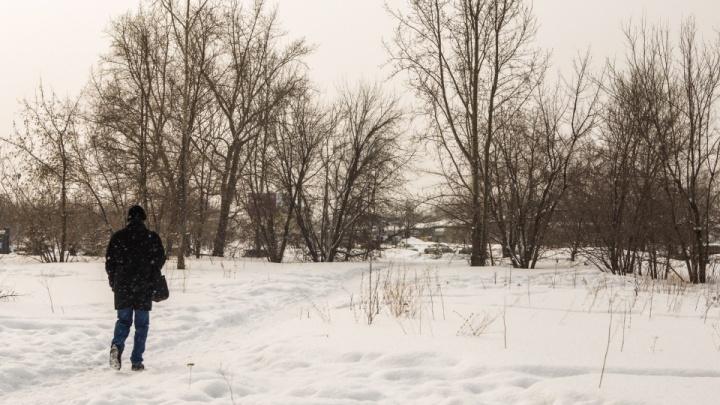 Мэрия продала скандальный пустырь вАкадемгородке— местные жители просили разбить там сквер