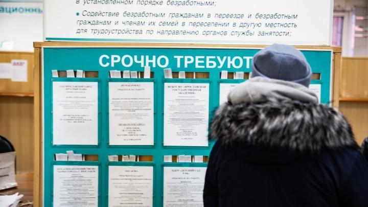 В Ярославле работодатели готовы платить больше, чем вы ожидаете: аналитика зарплат