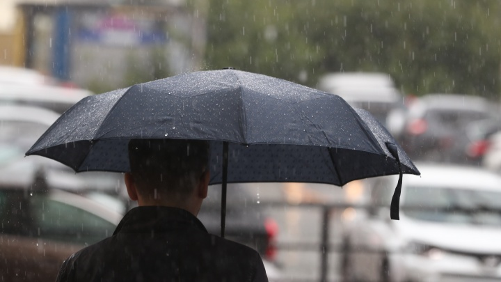 Какой погодой порадует начало осени в Новосибирске? Прогноз на неделю