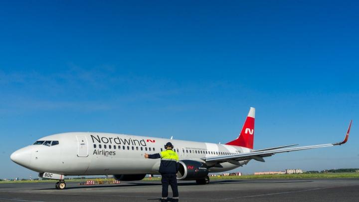 Из омского аэропорта запустили чартерные рейсы в Египет