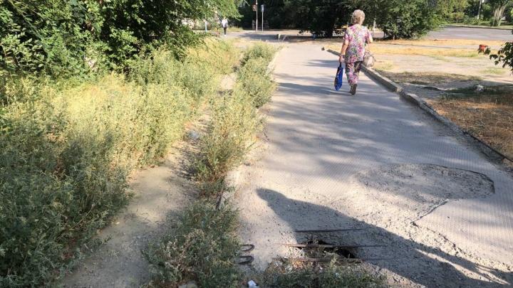 Чихаем и ломаем ноги: жители Краснооктябрьского района жалуются на заросли травы и дырявые тротуары