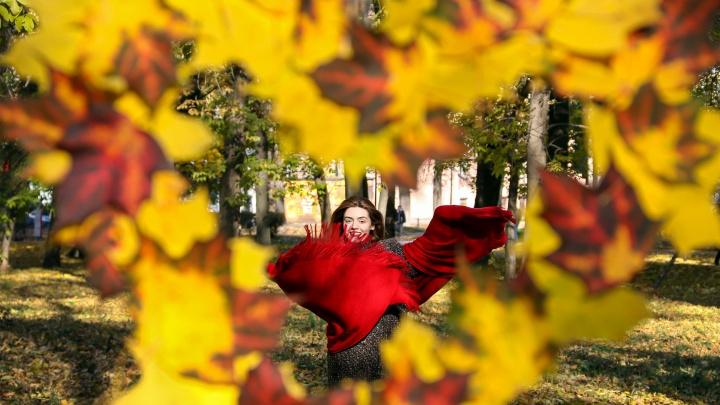 Лайфхак от редакции NN.RU: делаем фоторамку из кленовых листьев и картона