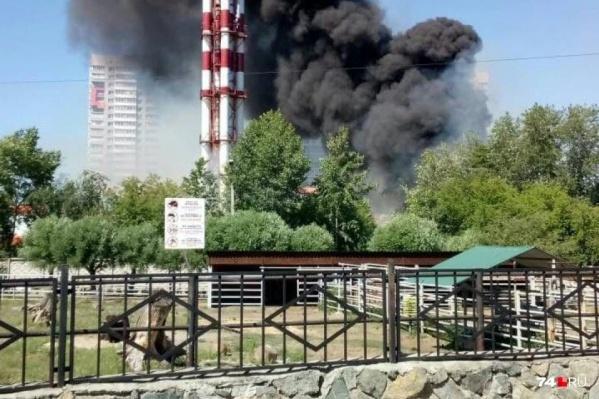 Крупный пожар случился в выходные и в центре Челябинска, рядом с зоопарком. Всего же зафиксированы сотни возгораний