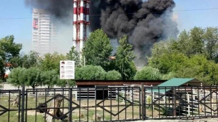 В Челябинске в 12 раз увеличилось число пожаров, власти бьют тревогу