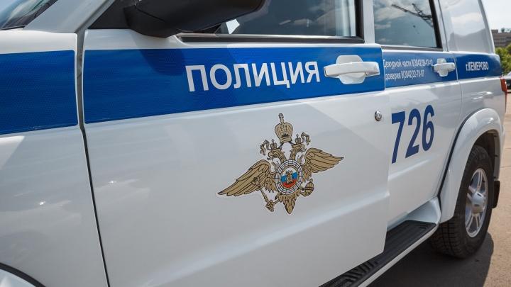 Губернатор Кузбасса прокомментировал убийство 10-летних девочек