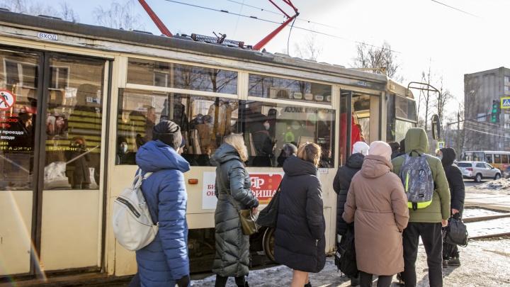 «Проскочим!»: как в Ярославле на деле работают новые правила проезда в транспорте. Видео