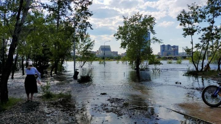 «Что делаем? Молимся!»: в Красноярске начало топить остров Татышев
