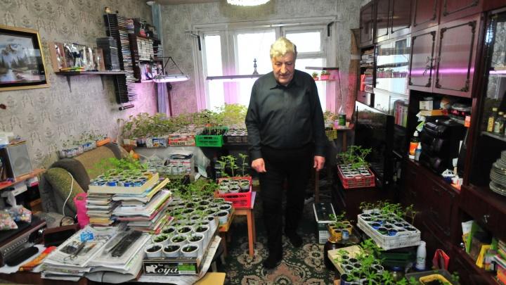 Мэрия отказалась признавать непригодной для жилья «темную» квартиру пенсионера с Сортировки