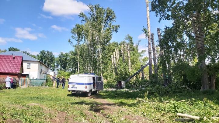 В Коченёво сорвалась люлька с рабочими, пилившими деревья, — погиб 24-летний парень