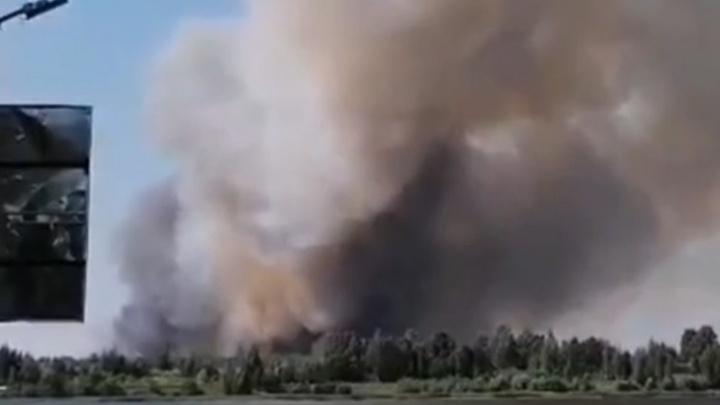 Видно из города: под Ярославлем начался лесной пожар. Видео