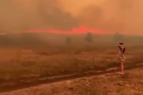 В Башкирии горит 542,3 гектара леса