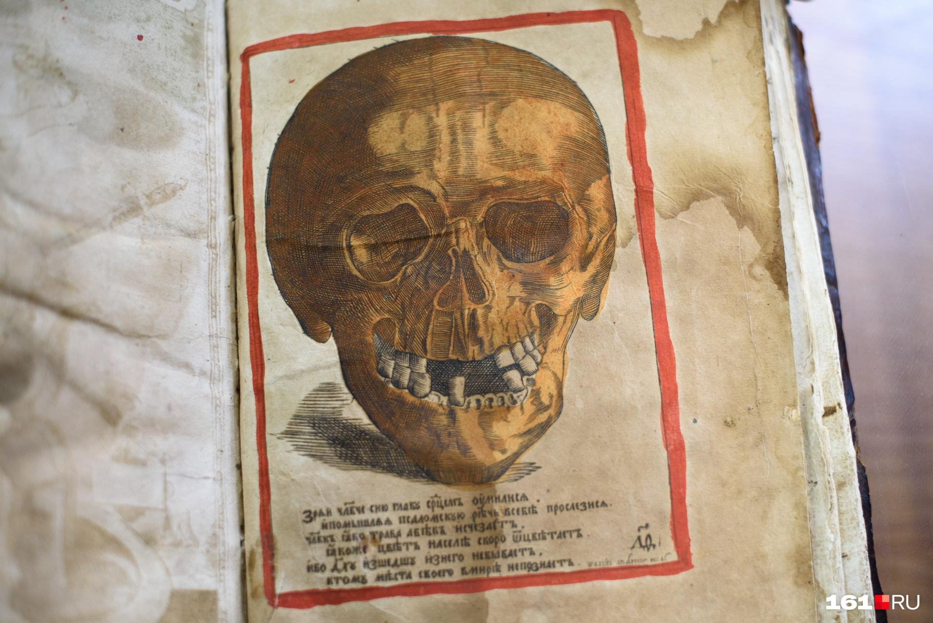 «Голова Адама» завершает серию иллюстраций в книге, дальше — записи об умерших