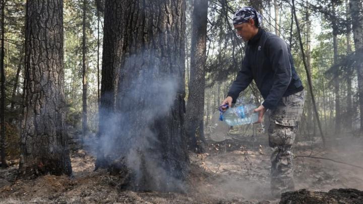 В Свердловской области похолодало. Поможет ли это погасить лесные пожары?