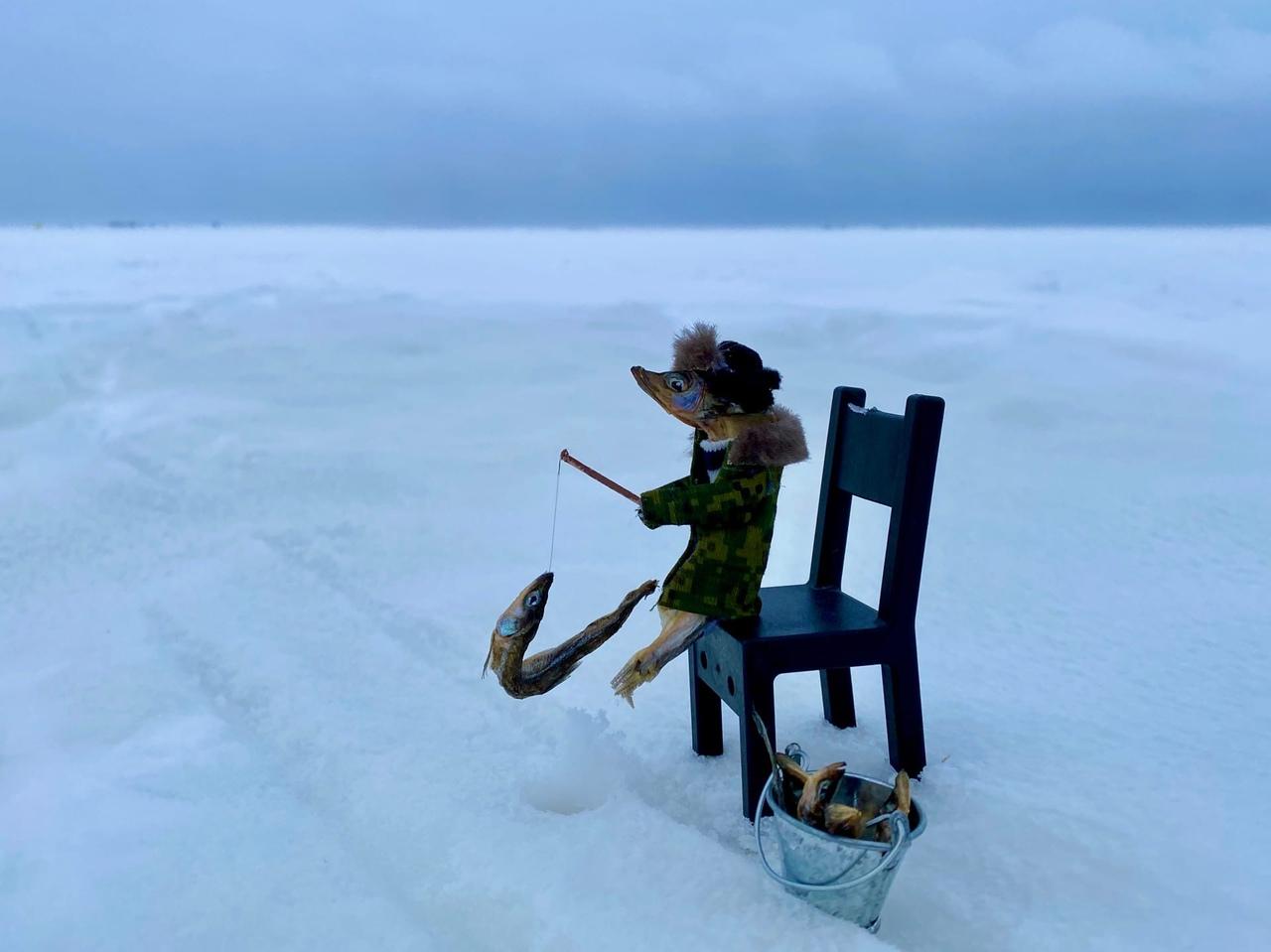 Нонсенс: рыба на рыбалке