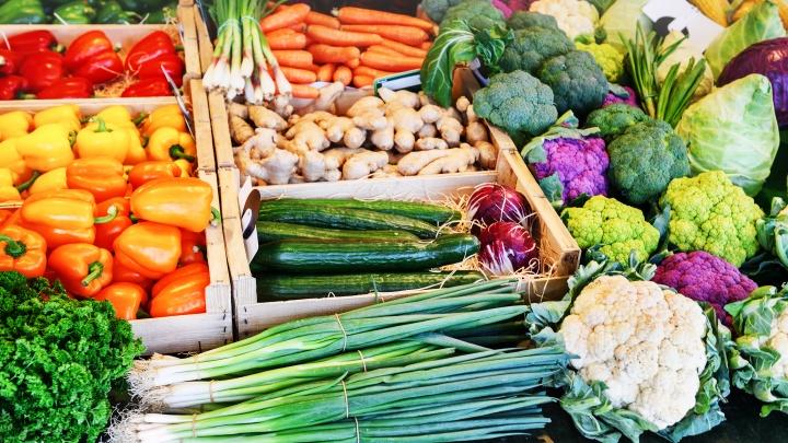 Земля обетованная для стартаперов: фермерам и производителям предложили перейти в высший эшелон