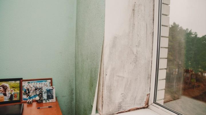 Тюменцы судятся с администрацией Винзилей из-за плесневелого дома, в котором нельзя жить
