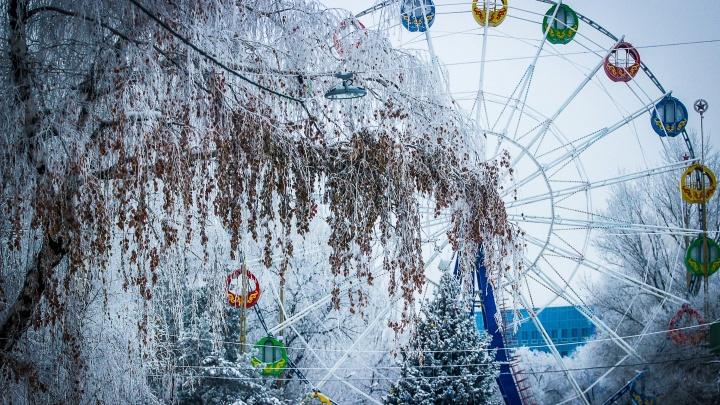 В Волгограде открылась выставка трогательных фотографий зимы и надежды на лучшие дни