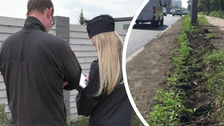 Бизнесмен, укравший кусты кизильника, договорился с Натальей Котовой о проекте благоустройства в Челябинске