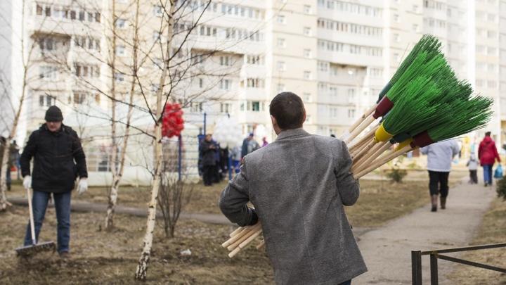 «Выходить на субботник — поощрять бездействие властей»: ярославцы жестко ответили экоактивистке