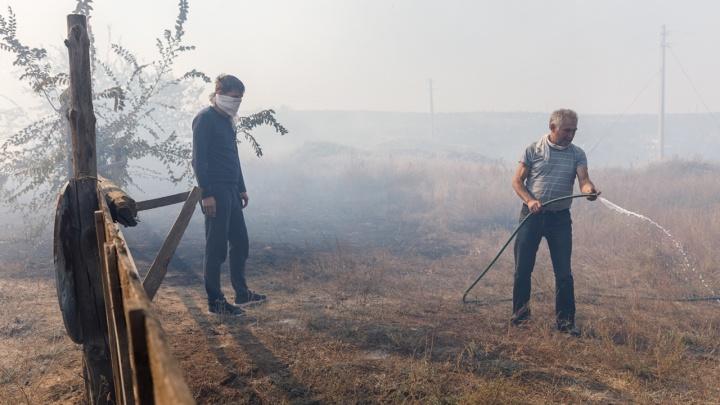 Под Волгоградом ликвидировали крупный лесной пожар
