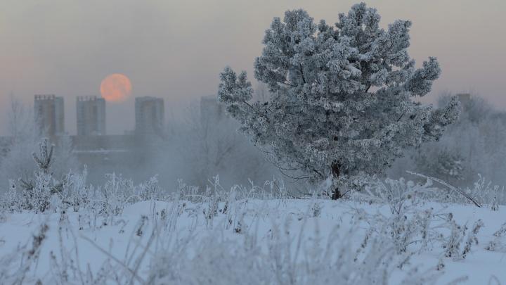 В Свердловскую область вернутся аномальные морозы. МЧС объявило штормовое предупреждение