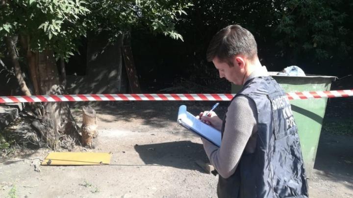 Следком проверит органы надзора после убийства двух школьниц в Киселёвске