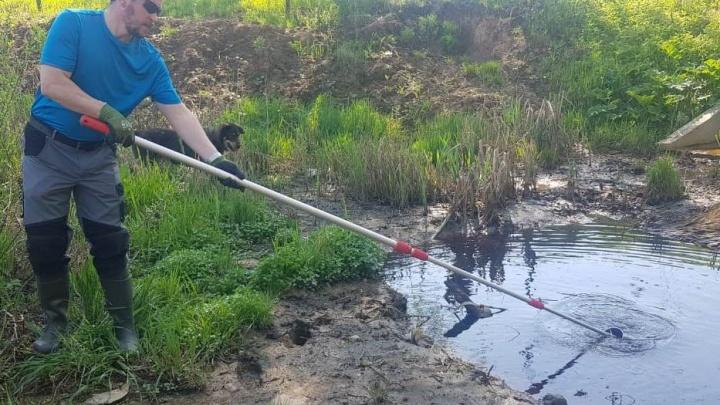 Попали стоки? Под Ярославлем потемнела река, текущая мимо мусорного полигона