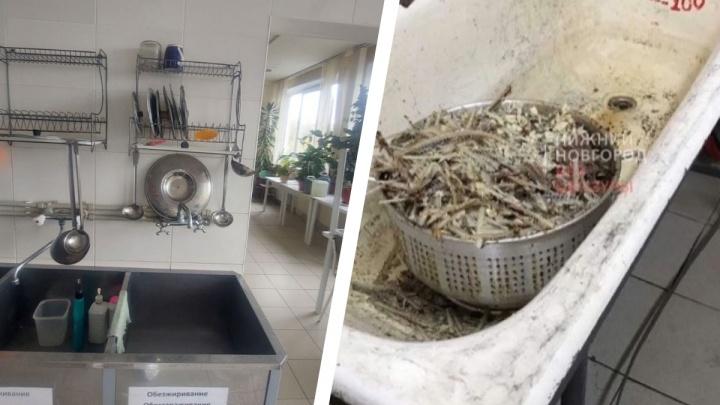 Отходы вывозятся ежедневно. В нижегородском Минздраве опровергли антисанитарию в пищеблоке больницы № 5