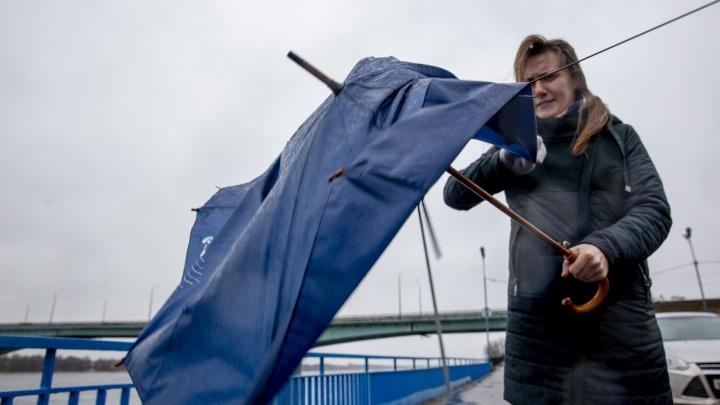 Погода испортится резко: в Ярославской области МЧС объявило экстренное предупреждение