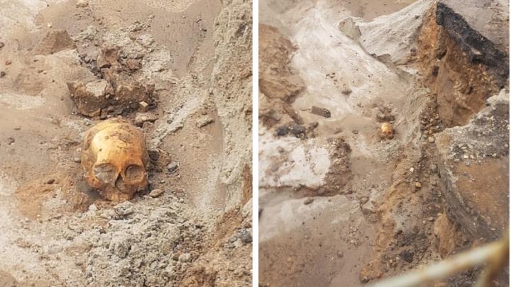 На Волжской набережной в Ярославле нашли человеческий череп