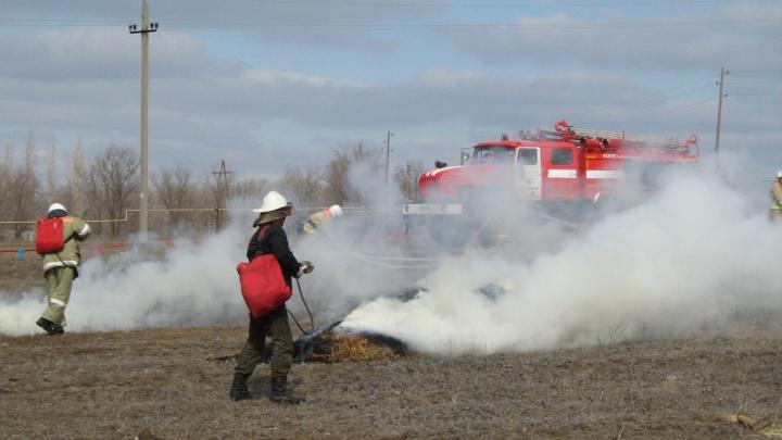 В Волгоградской области 19 человек потушили крупный лесной пожар