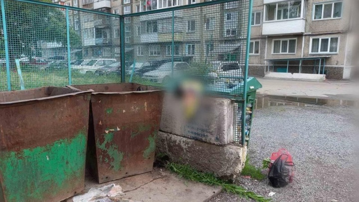 Замерзшее тело новорожденного ребенка нашли в мусорке в Ачинске
