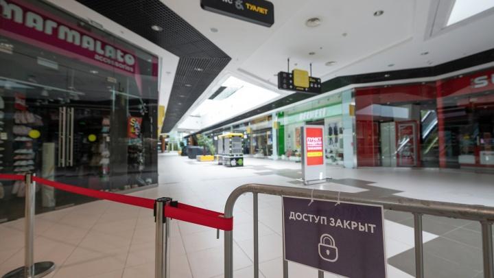 «Миля», «Жар-Пицца», «Золотая Прага»: в Волгограде первые восемь предпринимателей решили стать свободной от COVID зоной