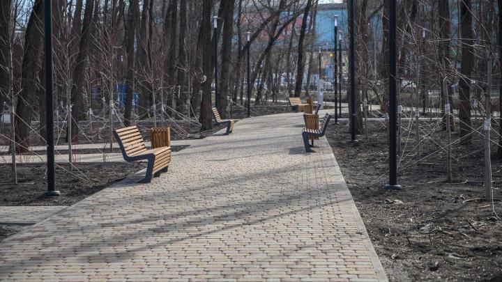 Аудиторы нашли многомиллионные нарушения в контрактах поблагоустройству парков Ростова