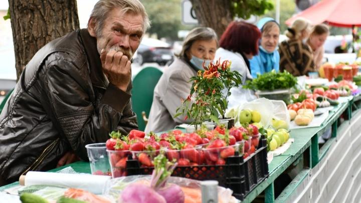 У кого дешевле и вкуснее? Сравниваем сезонные овощи в екатеринбургских магазинах и на рынках