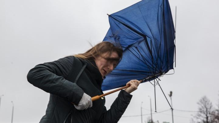 МЧС дало экстренное предупреждение для Ярославля о сильном дожде и ветре