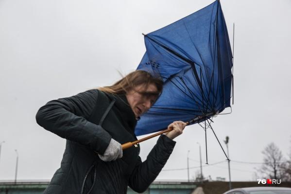 В Ярославле опять прогнозируют дождь и ветер