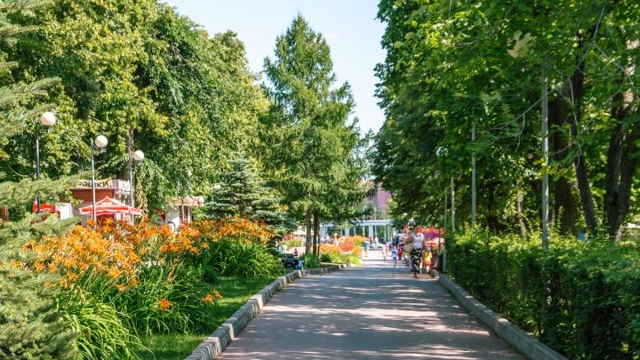 В Минстрое прокомментировали перспективы реконструкции Загородного парка