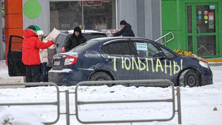 В Челябинске расцвела торговля тюльпанами и мимозами в Международный женский день